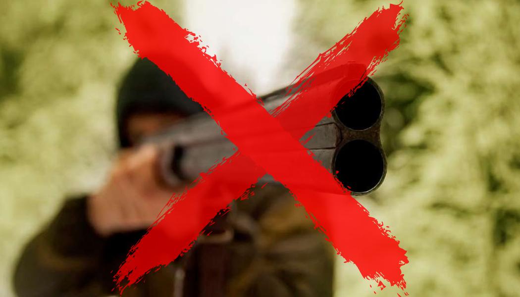 Cacciamo la caccia!